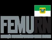 Logo da femurn
